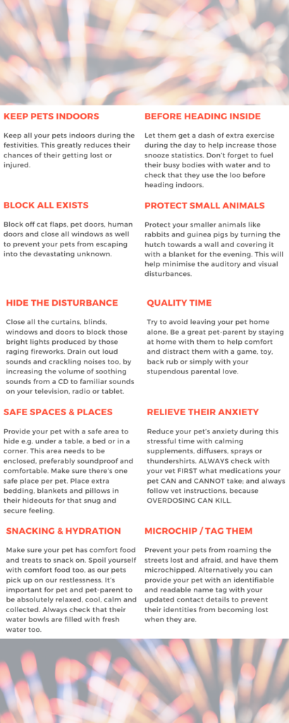 Here are our top tips and products to help keep your pets safe and calm during those inevitable festivities and frightful fireworks.