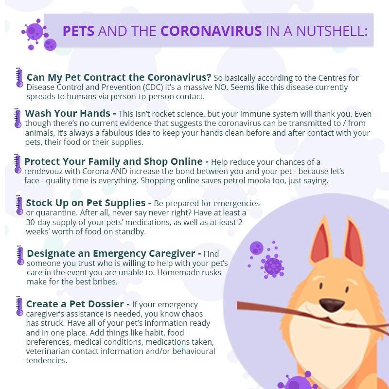An inforgraphic containing information in regards to your pets and the Coronavirus