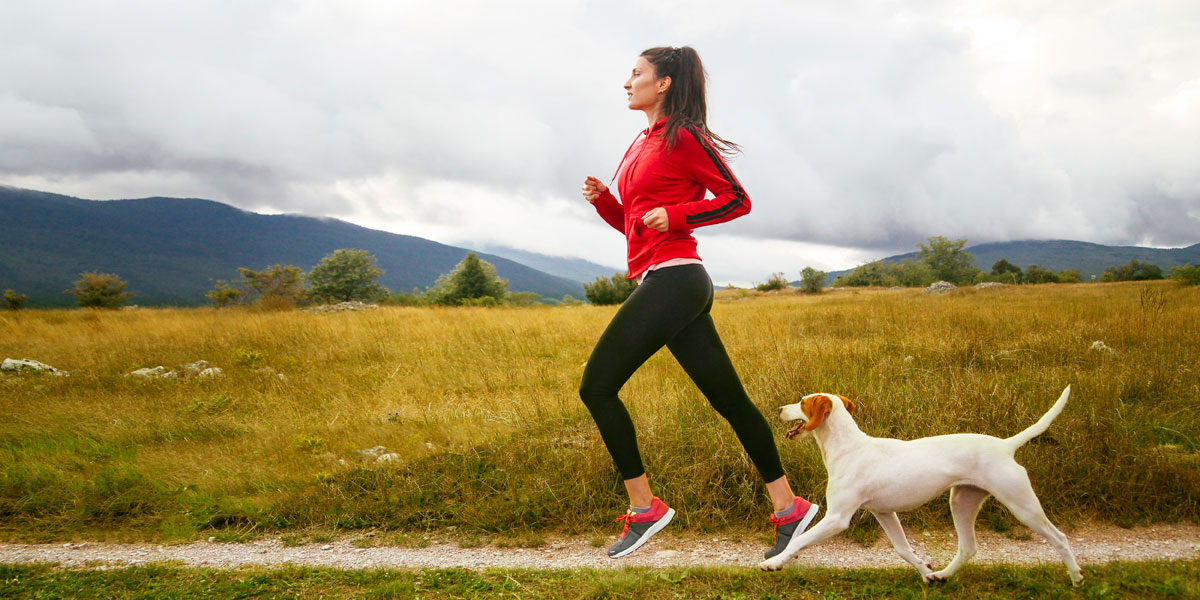 Keep Your Dog Fit In Winter With These Top Tips