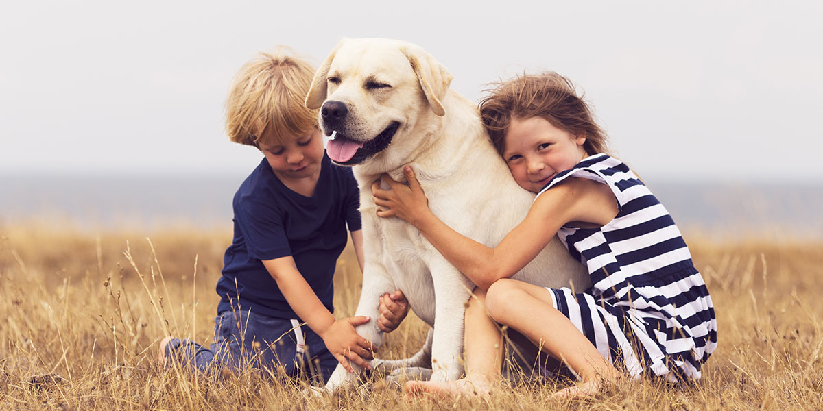 How To Choose The Best Breed To Get For A Child